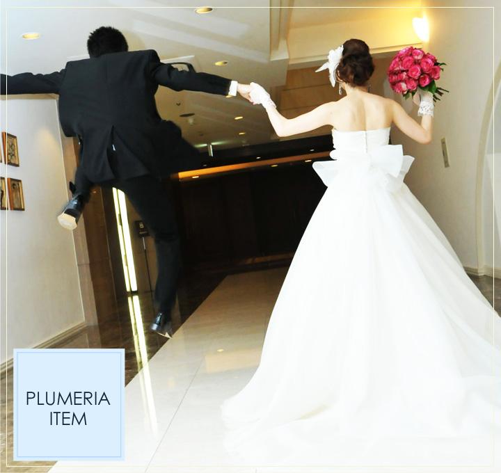 PLUMERIA ITEM
